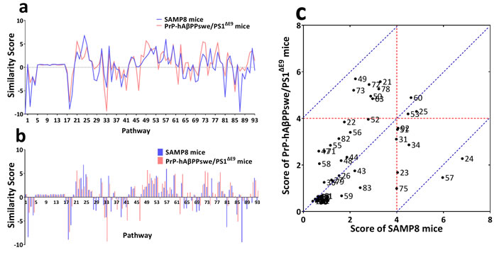 Network fingerprint analysis NIM network underlying cognitive impairment of SAMP8 and PrP-hAβPPswe/PS1