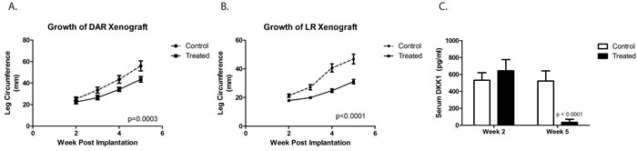 DKK-1 antibody BHQ880 slowed the growth of two different orthotopically implanted osteosarcoma xenograft, DAR (