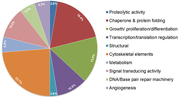 Pie chart depicting the binding partners of OPG from mass spectrometry analysis.
