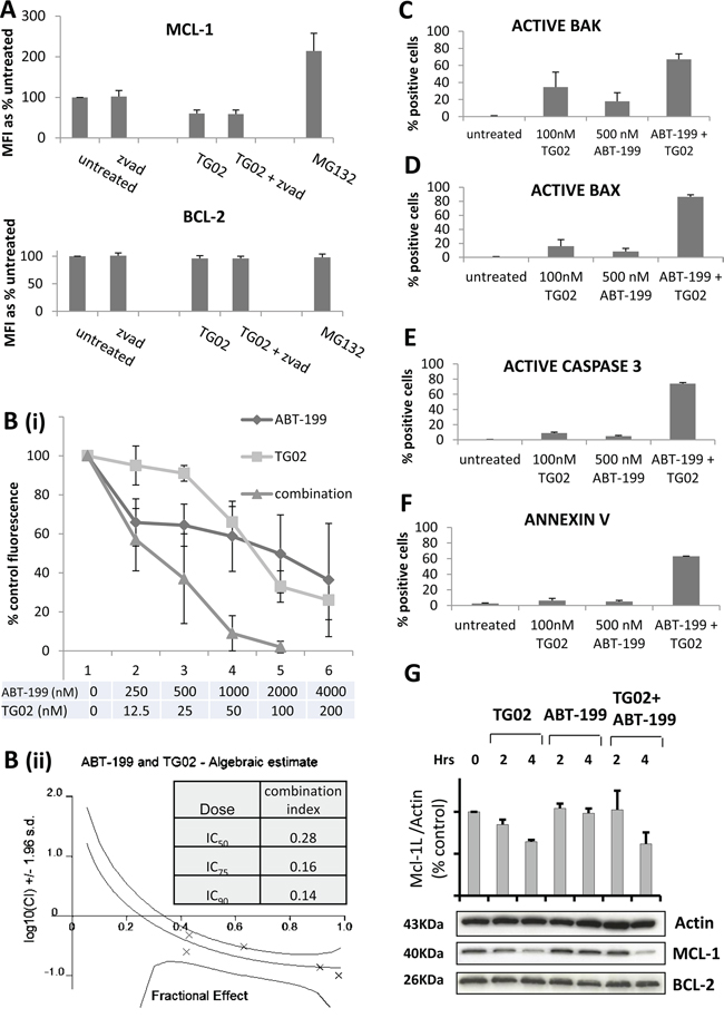 The combination of TG02 and ABT-199 synergises to induce apoptosis in KG-1a cells.