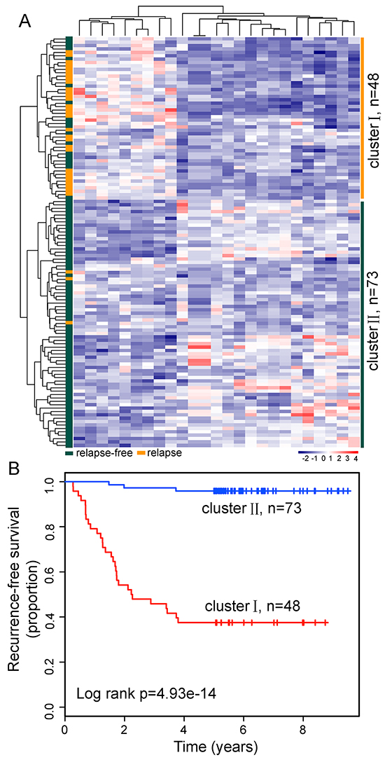 LncRNA expression patterns can distinguish patients who developed relapse from those who did not relapse in the discovery dataset.