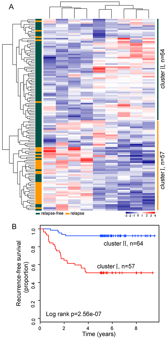 The heatmap and survival analysis of hierarchical clustering based on relapse-related lncRNA signature in the discovery dataset.