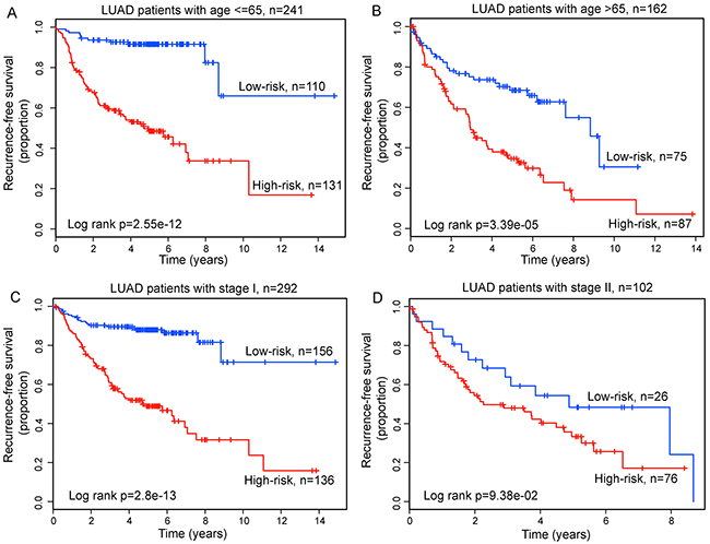Prognosis prediction in patients stratified by age and tumor stage.