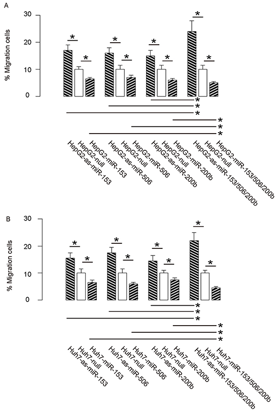 MiR-153, miR-506 and miR-200b overexpression suppresses HCC cell invasion.