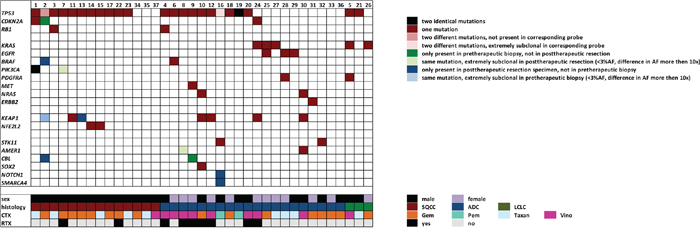 Mutations on a gene by gene and case by case basis shown in relation to clinicopathological and treatment data.