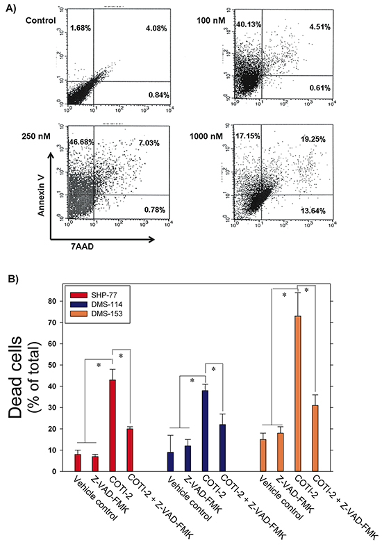 COTI-2 induces apoptosis in human cancer cells.