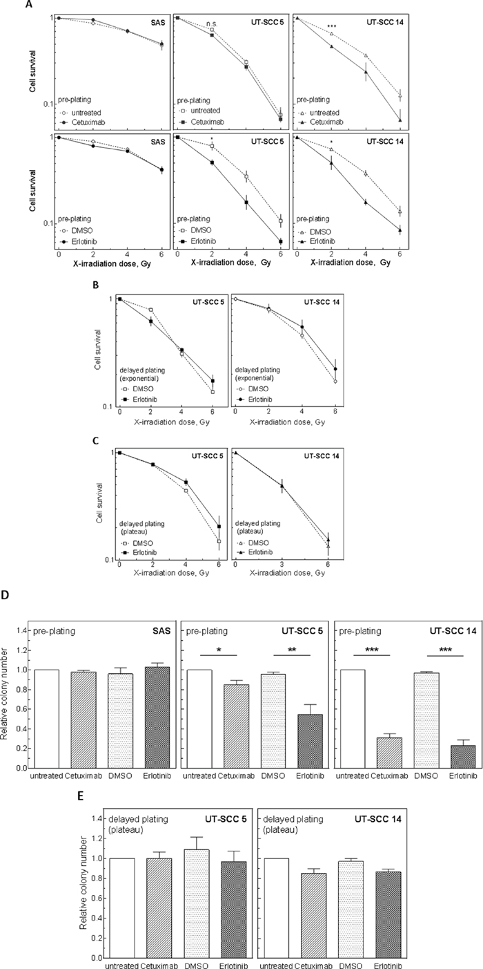 Influence of EGFR inhibition on radiosensitivity and cell survival under pre- and delayed plating conditions.