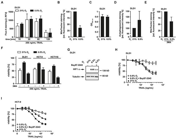Hypoxia-induced mitochondrial autophagy decreases TRAIL sensitivity.