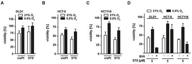 Hypoxia decreases sensitivity of colorectal cancer cells to apoptosis-inducing drugs.