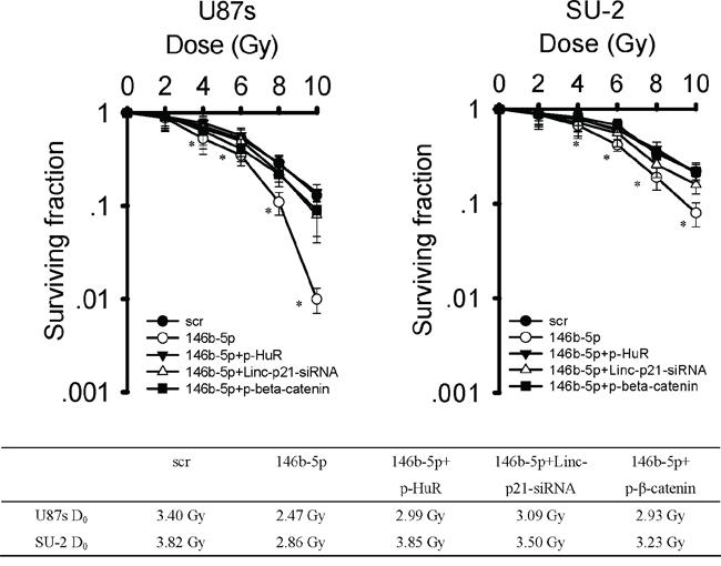 MiR-146b-5p overexpression decreased radioresistance of GSCs.