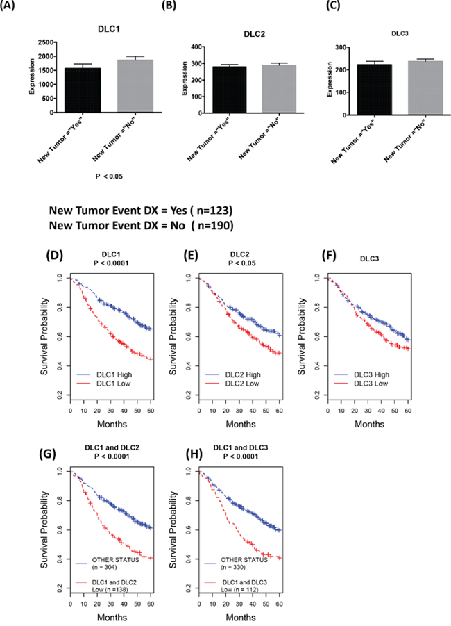 Down-regulation of DLCs is associated with poor prognosis.