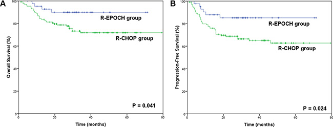 Survival outcomes in the R-EPOCH and R-CHOP groups.