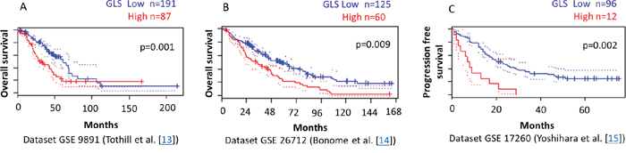 Higher GLS gene expression correlates with reduced survival of ovarian cancer patients.