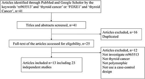 The flow chart for identifying relevant studies.