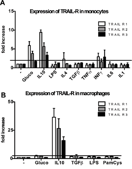 Modulation of TRAIL receptors in human monocytes and macrophages.