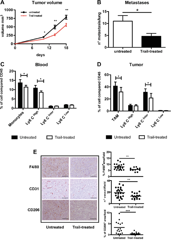 In vivo effects of TRAIL treatment on TAM and tumor growth.