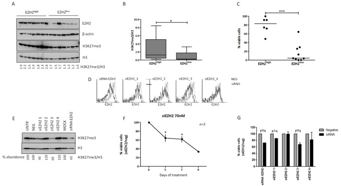 EZH2 expression induces trimethylation of H3K27 in CLL cells, while EZH2 downregulation with siRNA leads to apoptosis.