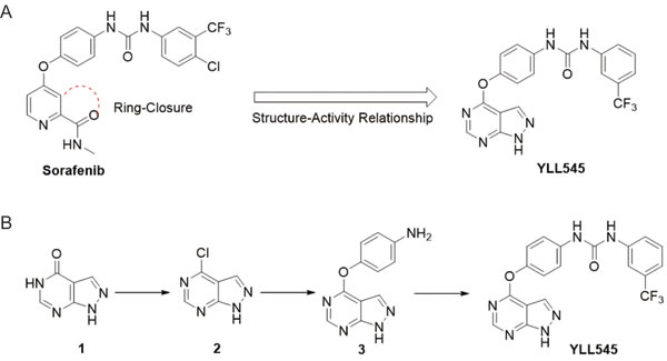 Design, synthesis and evaluation of YLL545.