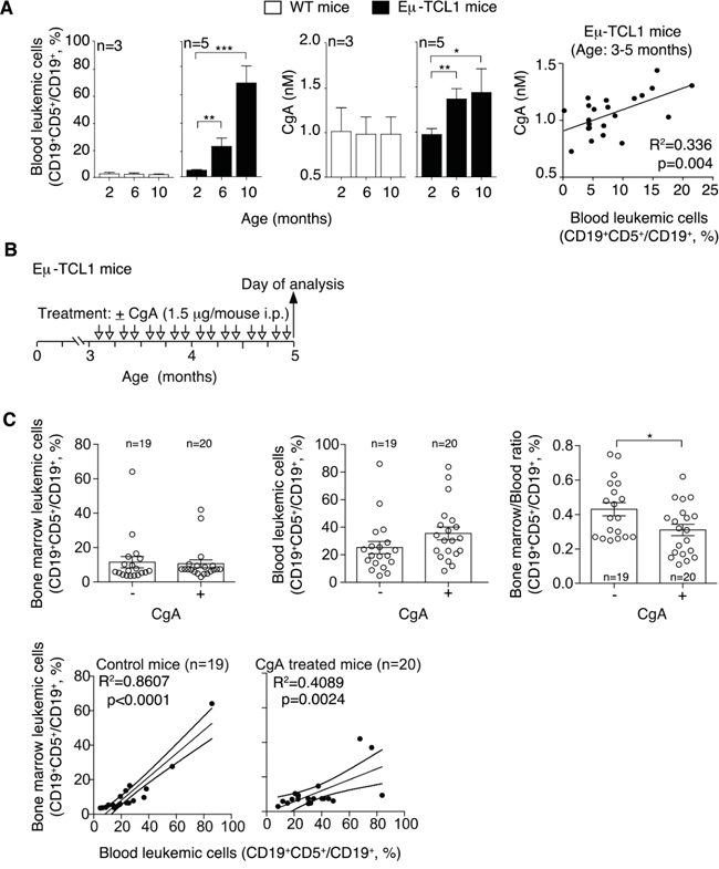 Plasma levels of CgA in Eμ-TCL1 mice and effect of exogenous CgA on the distribution leukemic cells in different compartments.