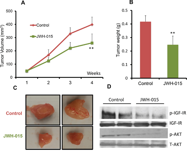 JWH-015 suppresses ERα+ breast cancer growth in vivo.