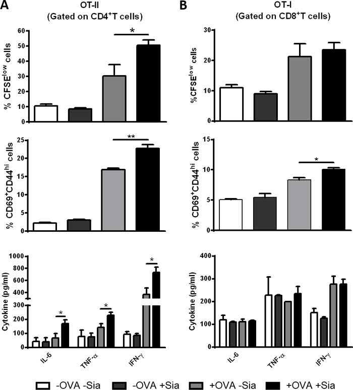 Sialidase treatment of murine sDCs induces OVA-specific CD4