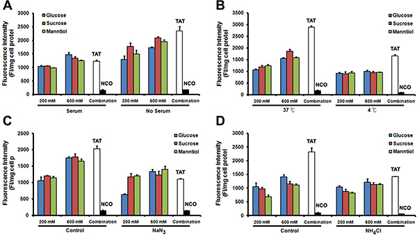 The mechanism of TAT-FITC penetration in Caski cell is not affected by glucose, sucrose and manntiol combination.