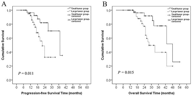 Progression-free survival and overall survival curves in patients with recurrent RPS in the small and large tumor groups.