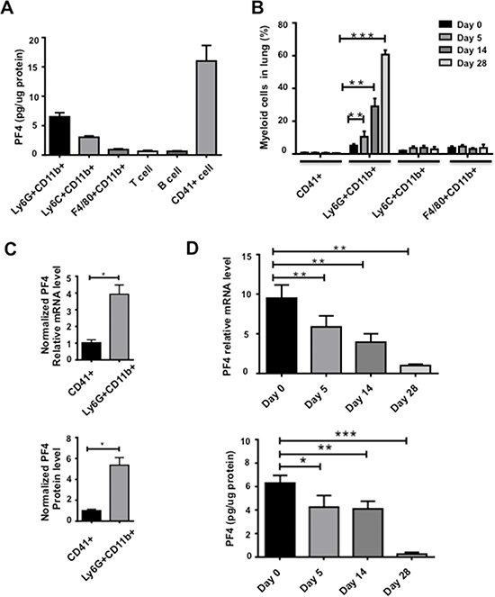 PF4 production was decreased in myeloid cells sorted from the premetastatic lungs during metastatic progression.