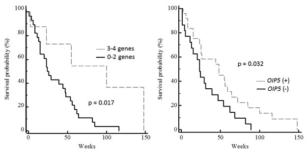 Correlation between CTA gene expression and overall survival of GBM patients.