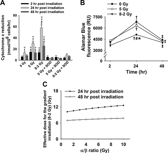 Cytochrome c reduction as well as corresponding cell viability and ED after irradiation (mean ± SE).