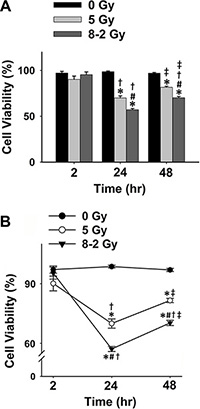 Cell viability measured using Trypan Blue for 0 Gy, 5 Gy, and 8–2 Gy (measured from 6–9 randomly selected areas of ~300–900 cells on the Trypan Blue assay slides, respectively; mean ± SE).