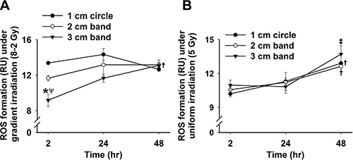 Grouped data showing intracellular ROS formation at 2, 24 and 48 h after irradiation under GI.