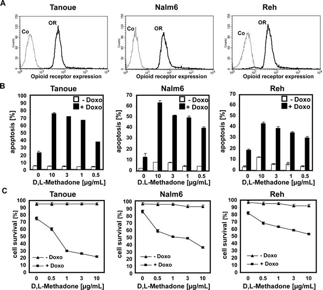 Combination treatment with D,L-methadone and doxorubicin induces apoptosis in ALL cells expressing moderate amounts of opioid receptors.