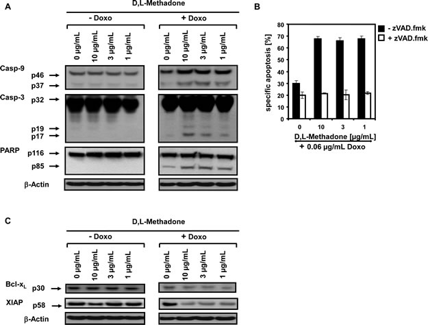 D,L-Methadone in combination with doxorubicin restores deficient activation of apoptotic pathways in BCP-ALL cells expressing moderate amounts of opioid receptors