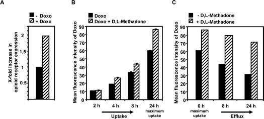 Doxorubicin enhances opioid receptor expression whereas D,L-methadone enhances doxorubicin uptake and inhibits its efflux.