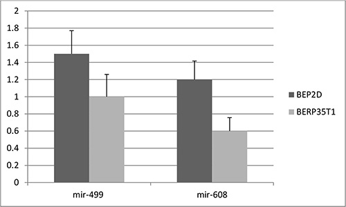 The expression level of mir-499 and mir-608 in cell lines.