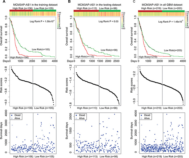 Survival analyses based on MCM3AP-AS expression.