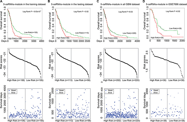Survival analysis of the 5-ceRNA module.