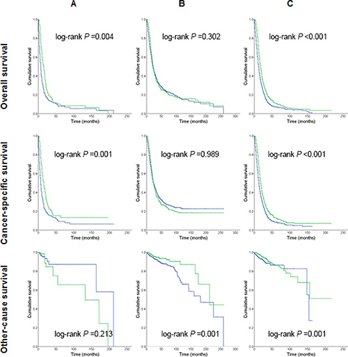 Kaplan-Meier survival curves for patients treated with or without postoperative radiation therapy.