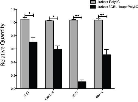 miR-K12-11 containing BCBL-1 supernatants reduce the TLR-3 and IKKε-dependent induction of ISGs.