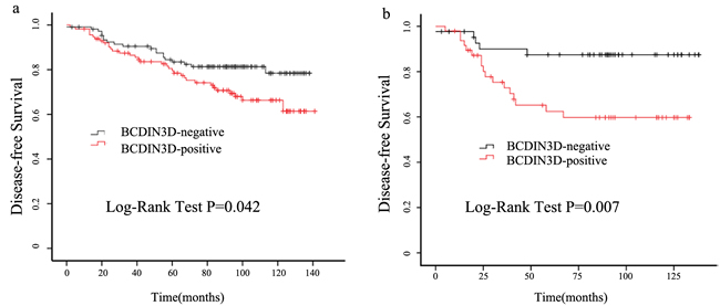 Elevated expression of BCDIN3D predicts worse clinical outcome in breast cancer patients,