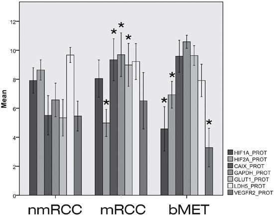 Expressions of HIF1α and HIF2α and their regulated genes at protein level in primary non-metastatic (nmRCC) and metastatic renal cancer (mRCC) and in bone metastases (bMET).