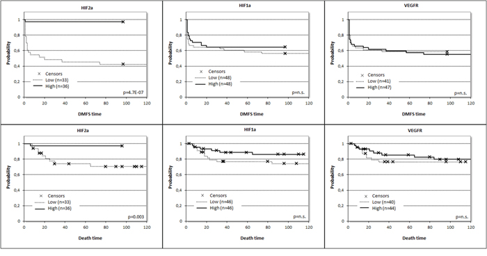 Prognostic potential for distant metastasis-free survival (DMFS) and overall survival (OS) related to expression of HIF1α (pDMFS= 0.435, HRDMFS /±95%CI/ = 0.775 ± 0.639, pOS= 0.169, HROS /±95%CI/ = 0.497 ± 0.995), HIF2α (pDMFS= 0.001, HRDMFS/±95%CI/ = 0.035 ± 2.014, pOS= 0.019, HROS/±95%CI/ = 0.085 ± 2.068) and VEGFR2 (pDMFS= 0.800, HRDMFS /±95%CI/ = 1.085 ± 0.639, pOS= 0.609, HROS /±95%CI/ = 0.780 ± 0.952) at mRNA level split at the median values.