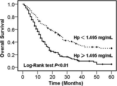 Kaplan-Meier survival curves of NSCLC patients.