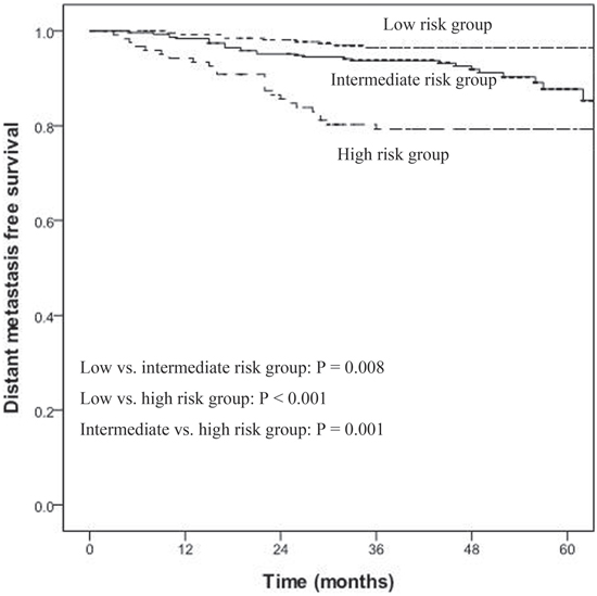 Distant metastasis-free survival (DMFS) for low-, intermediate-, and high-risk groups for all NPC patients (n = 719).