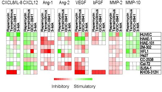 Effects of mTOR and PI3K inhibitors on constitutive release of angiogenic mediators by stromal cells.