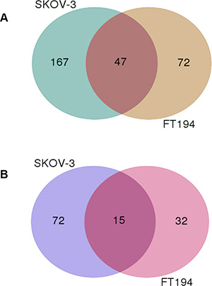 The Venn diagram of genes modulated upon PAX8 knockdown in SKOV-3 and FT194 cells.