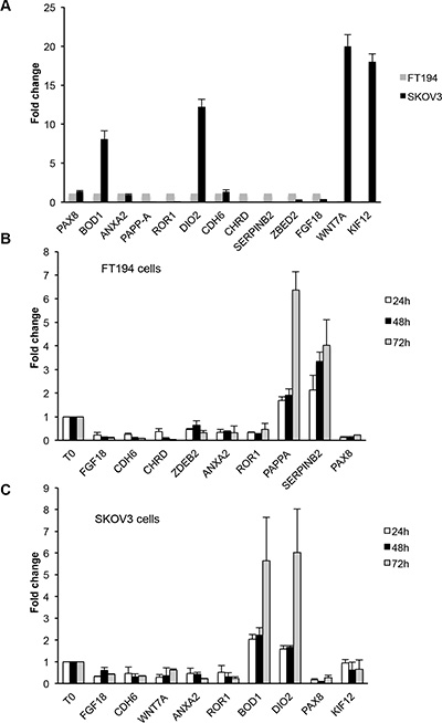 Validation of representative genes by qRT-PCR analysis.