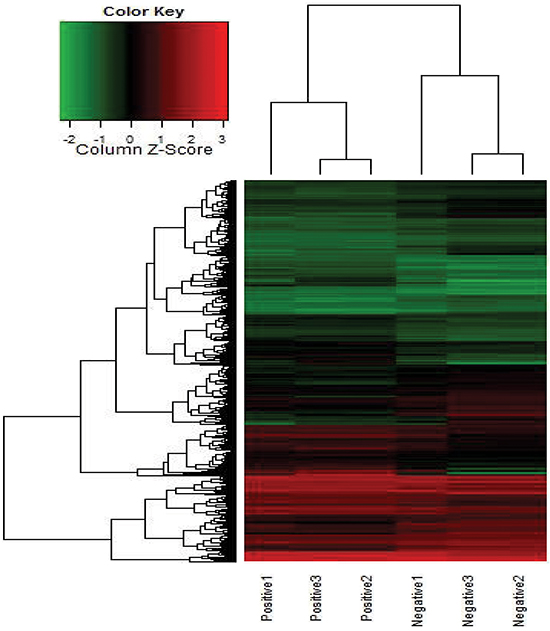 Heat map for the co-expression mRNAs of GAPLINC expressed in MLNs compared with NLNs.