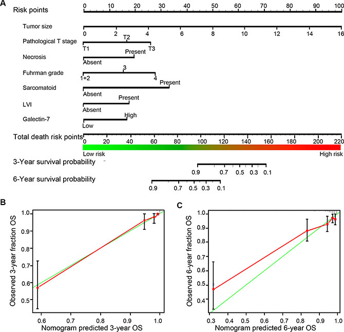 Nomogram and calibration plots for prognostic prediction of postoperative non-metastasis ccRCC patients.